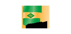 Logo LSRG